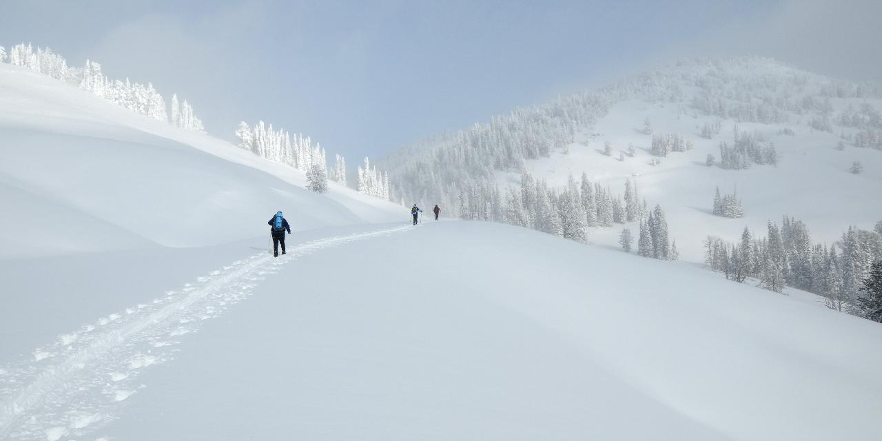 Snowshoeing to Dunraven Pass